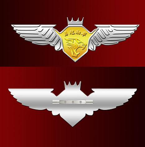 纯银徽章,9999千足银徽章,银徽章定制